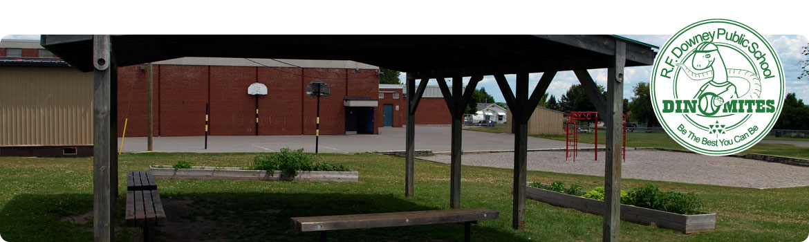 This is a picture of part of our main yard from our sun shelter.